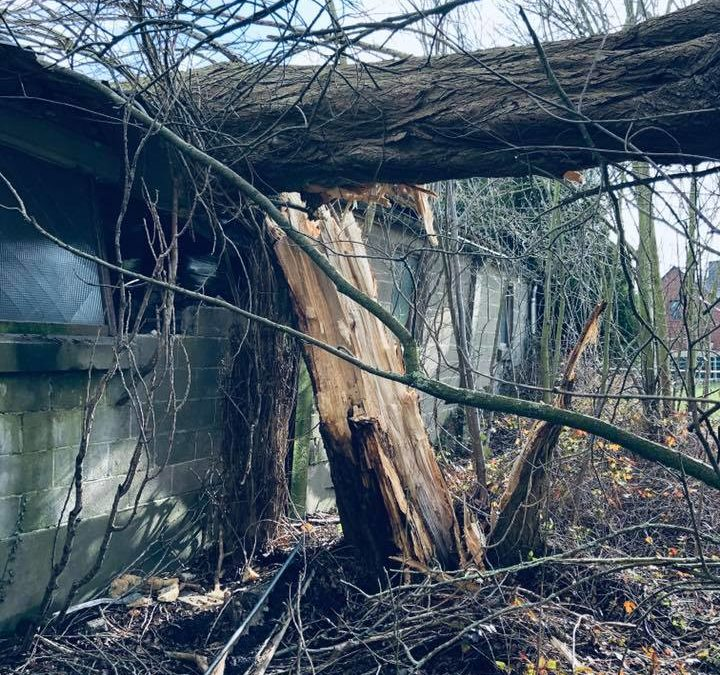 Sécurisation en urgence et démolition partielle d'un hall suite à un dégât de tempête